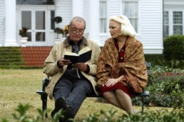 The Notebook Nicholas Sparks 3