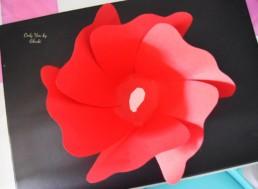 Fleurs DIY Miss Gloubi PaperbackDrop7