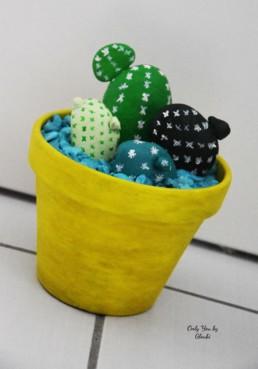 Cactus Galets Miss Gloubi DIY15