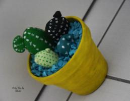 Cactus Galets Miss Gloubi DIY24
