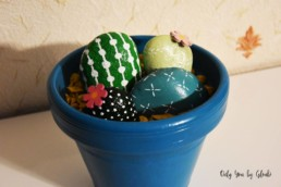 Cactus Galets Miss Gloubi DIY30