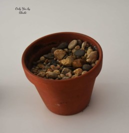 Cactus Galets Miss Gloubi DIY4