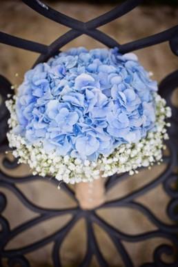significations fleurs Miss Gloubi37